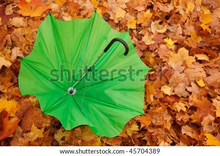 Green opened umbrella lies against yellow autumn leaves. Horizontal format. Stock photo © Paha_L