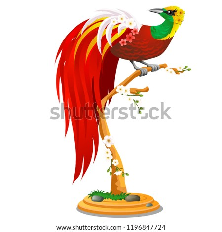 Beautiful bird of paradise sitting on a wooden perch with flowers isolated on white background. Vect Stock photo © Lady-Luck