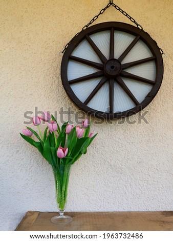 Vers tulp transparant glas water roze Stockfoto © artjazz