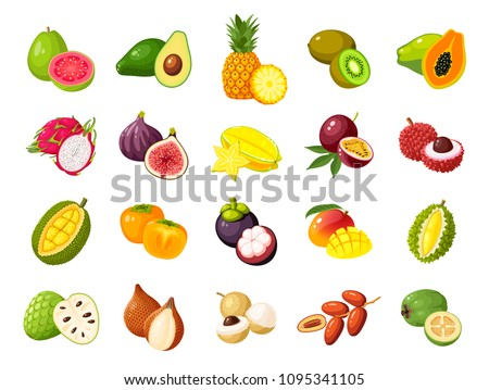 Vector isolated tropical fruits. Pitahaya or pitaya, fig. Creative artistic style. It can be use for Stock photo © user_10144511