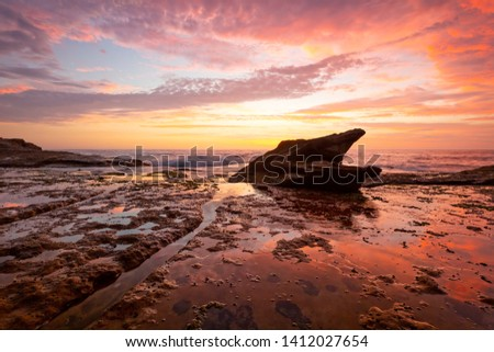 Sunrise on coastal beach rock shelf with reflections low tide Stock photo © lovleah