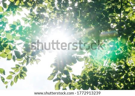 Brilhante sol imagem azul nublado céu Foto stock © magann