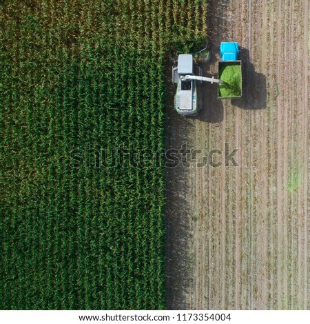 Aerial view of combine pouring harvested corn grains into traile Stock photo © stevanovicigor