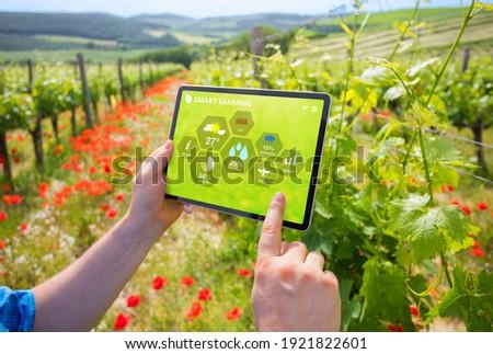 smart · moderne · technologie · agrarisch · activiteit - stockfoto © stevanovicigor