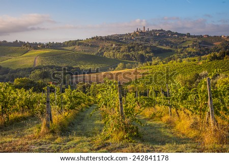 countryside and chianti vineyards near san gimignano intuscany stock photo © boggy