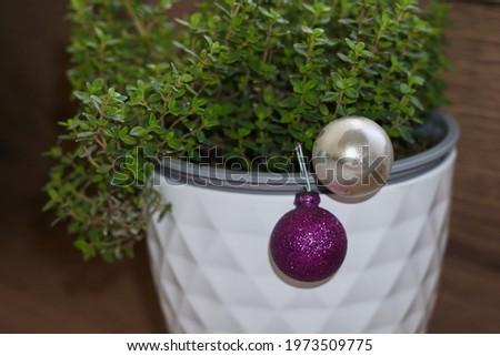 Wooden background Stock photo © Koufax73