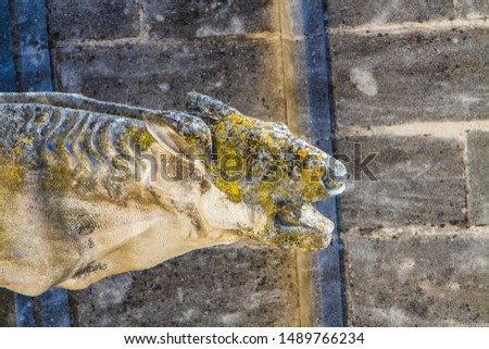 Dragon shaped waterspout at  Palais des Papes in Avignon, France Stock photo © boggy