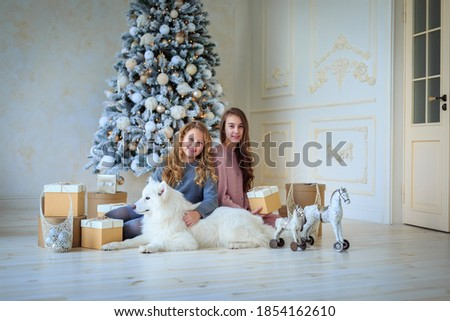 Holidays, winter time and animals concept. Dog sits on floor near bed on bedclothes, wears red Santa Stock photo © vkstudio