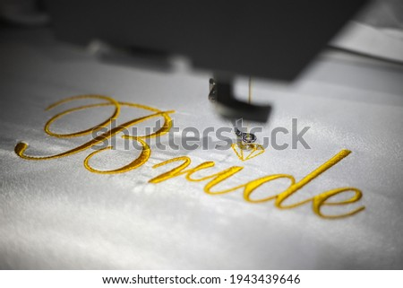 woman in black and white lingerie Stock photo © dolgachov