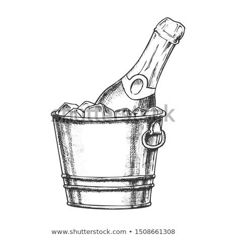 Champagner Flasche Eis Tinte Vektor kalten Stock foto © pikepicture