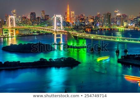 Tokio toren regenboog brug Japan luchtfoto Stockfoto © vichie81