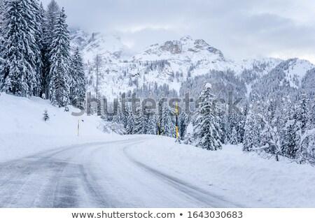 mountain pass Stock photo © pancaketom