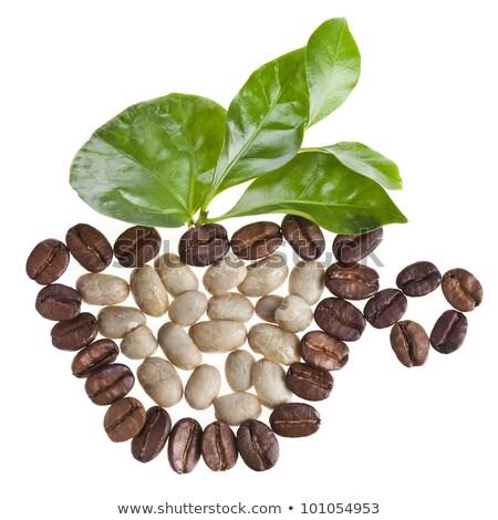 Csésze friss nyers organikus kávé kávé Stock fotó © DenisMArt