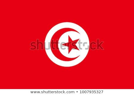 Tunísia bandeira branco fundo assinar viajar Foto stock © butenkow