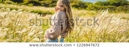 Szalag hosszú formátum fiatal gyönyörű nő ősz Stock fotó © galitskaya