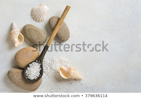 Overhead view of sea salt bath scrub Stock photo © klsbear