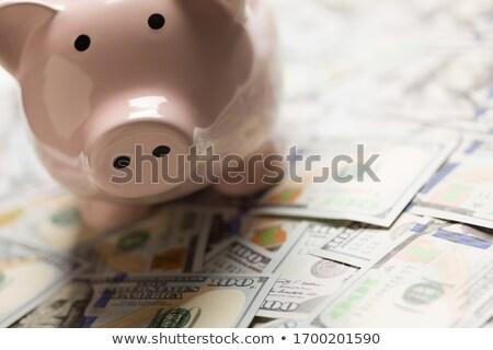 Spaarvarken Verenigde Staten een honderd Stockfoto © feverpitch