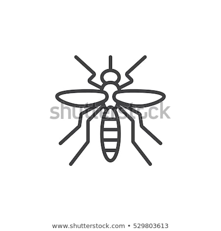 Malaria Mosquito Icon Vector Outline Illustration Stock photo © pikepicture