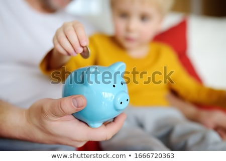 Financial literacy and money management Stock photo © Kotenko