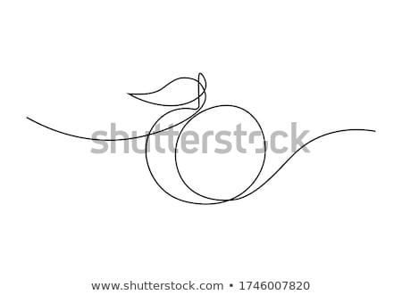 персика фрукты лист икона вектора Сток-фото © pikepicture