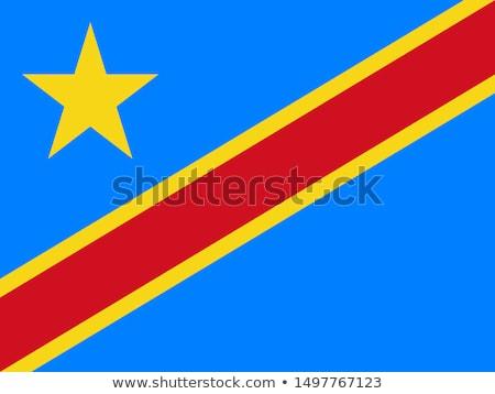 Wektora zestaw banderą demokratyczny republika Congo Zdjęcia stock © butenkow