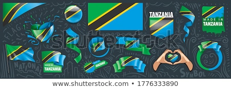 Vector set of the national flag of Tanzania in various creative designs Stock photo © butenkow