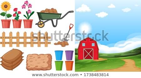 Farm jelenet farm egyéb gazdálkodás illusztráció Stock fotó © bluering