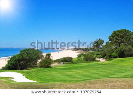 Golfe bandeira armadilha verde campo parque Foto stock © vapi