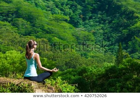 Frau Yoga Hawaii Berge Natur asian Stock foto © Maridav