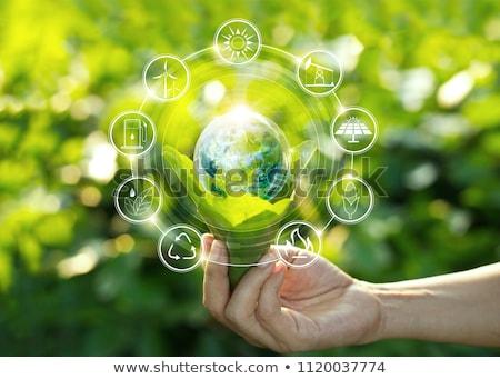 Ecológico hoja verde botón muchos azul botones Foto stock © sippakorn