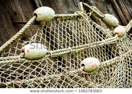 пробка веревку Сток-фото © premiere