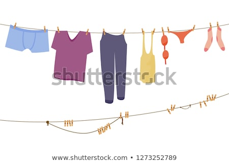 ruházat · vonal · madarak · ruházat · akasztás · égbolt - stock fotó © mintymilk