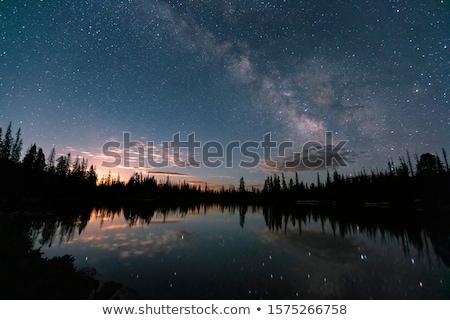 Notte lago shore acqua cielo albero Foto d'archivio © Aliftin