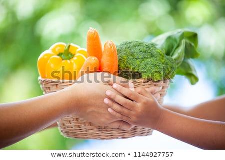 Ebeveyn genç kız sepet sebze kadın Stok fotoğraf © photography33