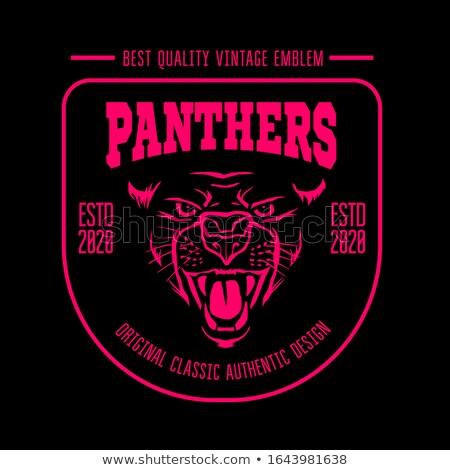 Сток-фото: Panther Eyes Mascot Graphic
