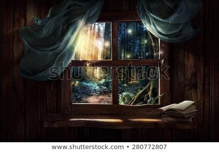Old window with books Stock photo © njnightsky