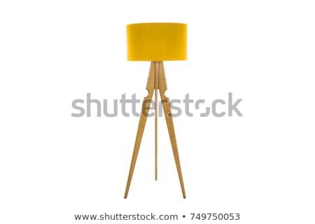 Meubles lampe illustration intérieur maison maison Photo stock © re_bekka
