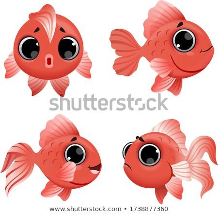 Zeichentrickfigur · Fisch · isoliert · weiß · Vektor · Baby - stock foto © RAStudio
