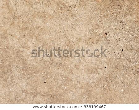 высушите · земле · природного · текстуры · фон - Сток-фото © latent