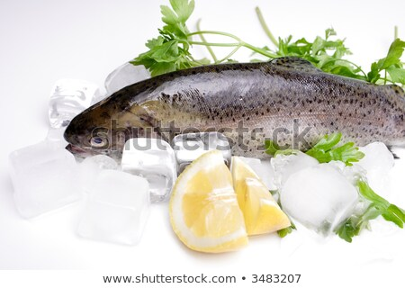 Ice cube and fish with parsley Stock photo © Givaga