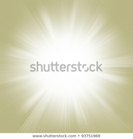 элегантный · дизайна · прибыль · на · акцию · вектора · файла - Сток-фото © beholdereye