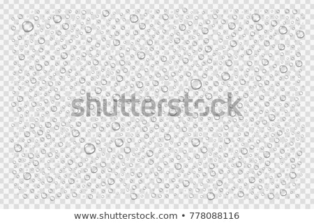 water droplets background stock photo © rogerashford