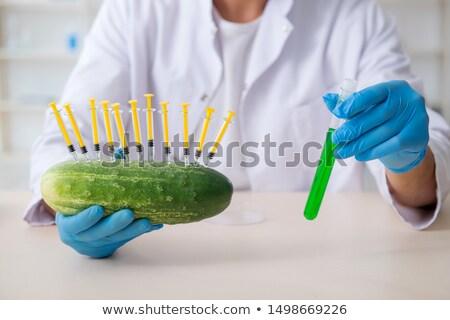 Bio genética pesquisa comida pepino seringa Foto stock © ozaiachin