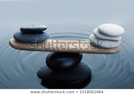 Equilibrium stock photo © gophoto