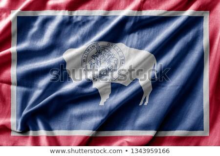 Vászon zászló Wyoming rövidítés textúra szövet Stock fotó © michaklootwijk