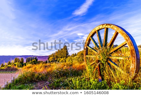 Spaak wiel klassiek metaal Stockfoto © Anterovium
