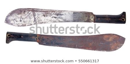 Rozsdás izolált fehér kés szerszám Amerika Stock fotó © michaklootwijk