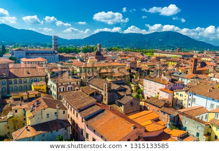 lucca roof town Stock photo © tiero