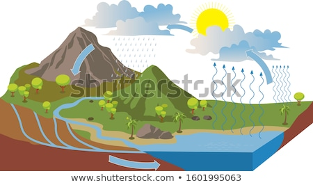 Water cyclus diagram tonen boom landschap Stockfoto © stockshoppe