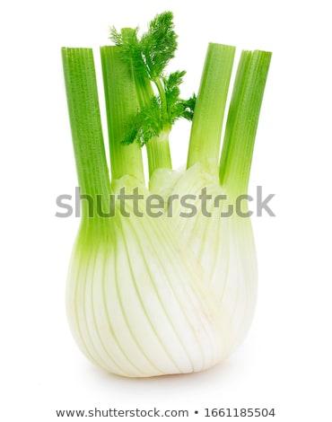 Funcho comida natureza verde medicina cozinhar Foto stock © yelenayemchuk